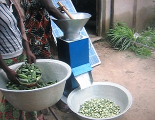 UN_COUPE-LEGUMES_MADE_IN_TOGO_ENTRAIN_DE_COUPE_DU_GOMBO-2.jpg